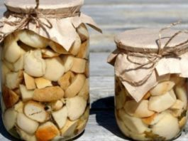 Мариновані білі гриби на зиму