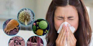 Які речі дома викликають алергію