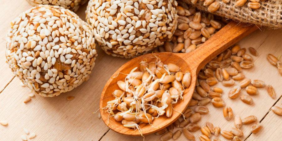 Зародки пшениці