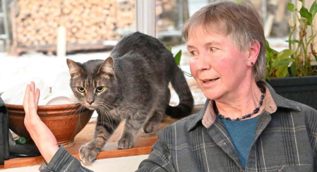 Кіт, який повернувся на річницю смерті господаря