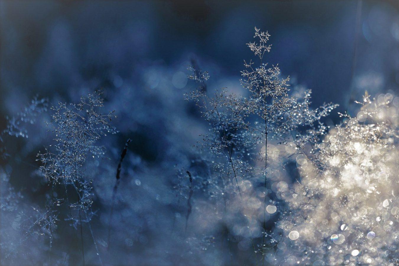 Народні прикмети зимових свят