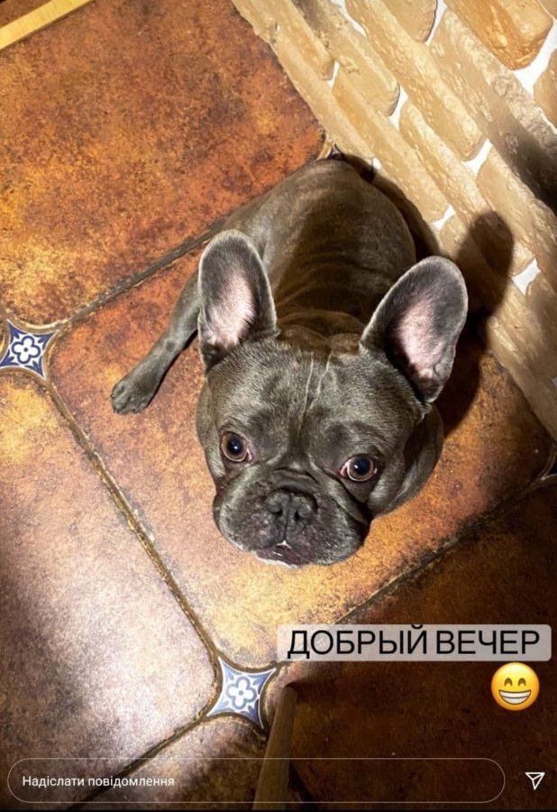 Новий друг Олени Шоптенко