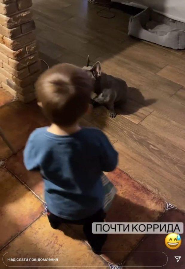 Собака з сином Олени Шоптенко