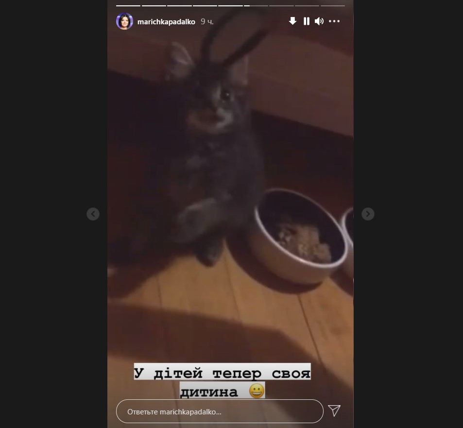Марічка Падалко з донькою забрали кошеня з притулку